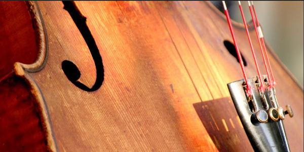 cello-detail_600px